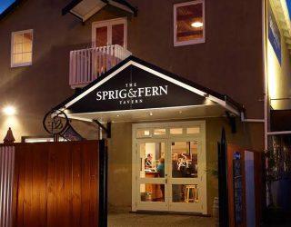 Sprig & Fern