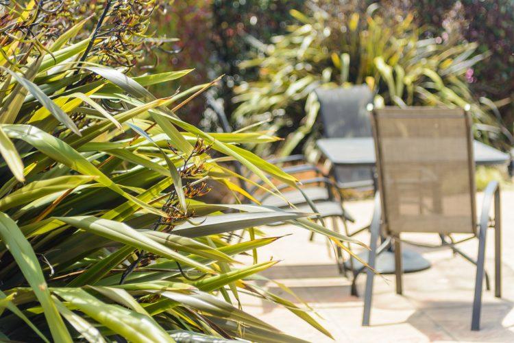 home-garden-poolside-9369